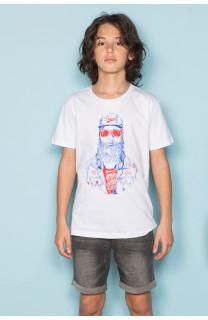 T-Shirt T-Shirt TELLON Garçon S19143B (42613) - DEELUXE