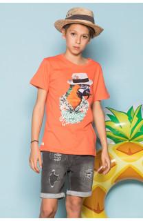 T-Shirt T-Shirt HAVANA Garçon S191108B (44795) - DEELUXE