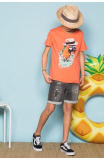 T-Shirt T-Shirt HAVANA Garçon S191108B (44796) - DEELUXE