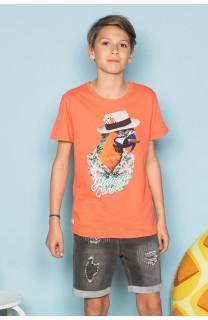 T-Shirt T-Shirt HAVANA Garçon S191108B (44797) - DEELUXE