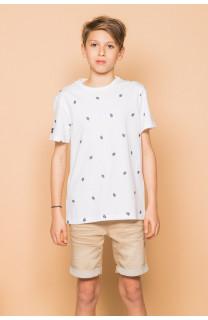 T-Shirt T-Shirt COYOTE Garçon S19105B (45071) - DEELUXE