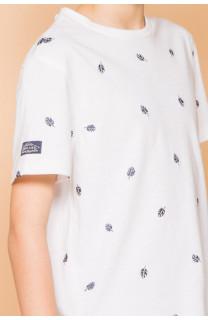T-Shirt T-Shirt COYOTE Garçon S19105B (45073) - DEELUXE