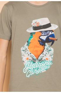 T-Shirt T-Shirt HAVANA Garçon S191108B (45093) - DEELUXE